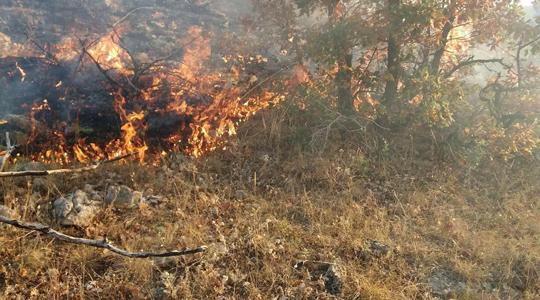 Изгорена куќа  две плевни и шума во Крива Паланка