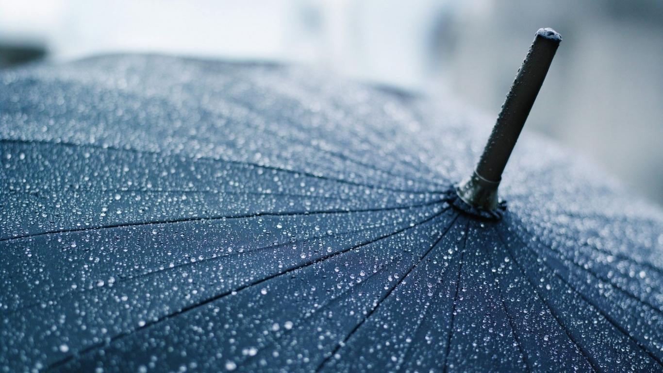 Од ноќеска дожд  силен ветер и пад на температурата