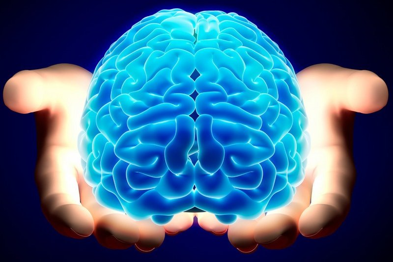 mozokot-ne-gi-kontrolira-samo-nashite-misli-i-osnovni-fizioloshki-funkcii-poglednete-shto-otkrija-nauchnicite