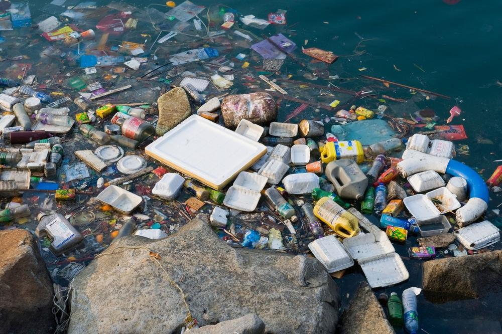 Ова е спас за човештвото  Научниците случајно открија бактерија која ја уништува пластиката