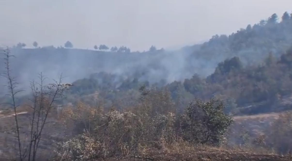 Повеќе од 10 пожари беснеат во Македонија